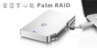 palm raid review